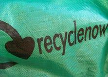 Sacchetto verde Fotografie Stock Libere da Diritti