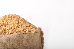 Sacchi dei granuli del frumento Immagine Stock Libera da Diritti