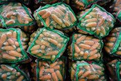 Sacchi dell'essiccazione del cereale o del mais sul tetto, villaggio rurale, cereale nel gre Immagine Stock Libera da Diritti