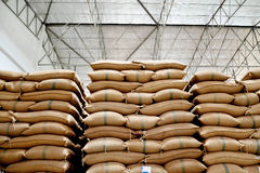 Sacchi della canapa che contengono riso Fotografie Stock
