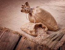 Sacchi delle orecchie del grano e del grano Fotografie Stock