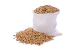 Sacco asciutto del mucchio del seme del riso della risaia Immagine Stock Libera da Diritti