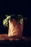 Sacco di carta con i verdi di barbabietola Concetto di acquisto di drogheria sano Fotografia Stock Libera da Diritti