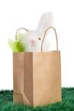 Sacco di carta di Brown con il coniglietto di pasqua bianco Fotografie Stock