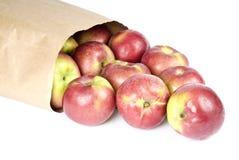 Sacco di carta in pieno delle mele del Macintosh dal suo lato immagine stock
