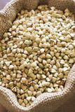 Sacco di grano saraceno Fotografia Stock Libera da Diritti
