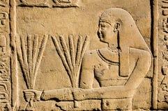 Sacerdote egiziano antico con frumento Fotografia Stock Libera da Diritti