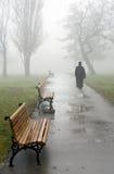 Sacerdote en niebla Foto de archivo