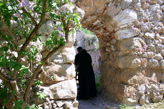 Sacerdote ortodosso serbo del monastero Fotografia Stock