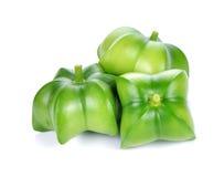 sacha-Inchi arachid Fotografia Stock