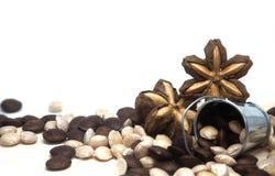 Sacha inchi. Image of sacha inchi seed on white background stock image