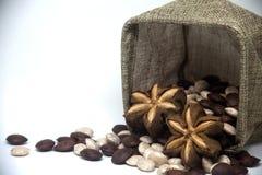 Sacha inchi. Image of sacha inchi seed on white background stock photos