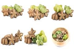 Sacha inchi peanut seed Stock Image