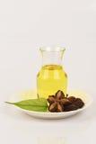 Sacha inchi, Sacha inchi, Sacha mani, Inca peanut oil from seeds and Sacha. Royalty Free Stock Photo