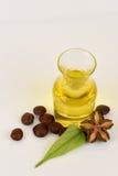 Sacha inchi, Sacha inchi, Sacha mani, Inca peanut oil from seeds and Sacha. Stock Photography
