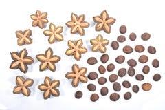 Sacha-inchi, sacha Mani oder Sterninkaerdnusssamen auf weißem backgr Lizenzfreie Stockbilder