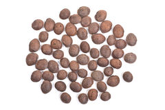 Sacha inchi, sacha mani or star inca peanut seed on white backgr Royalty Free Stock Images