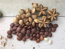 Sacha Inchi seeds and dried fruits Royalty Free Stock Photography