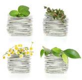 Sachets à thé avec du thé de fines herbes photos stock