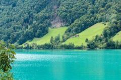 SACHSELN SWITZERLAND/EUROPA, WRZESIEŃ 22, -: Widoków domy along Zdjęcia Royalty Free