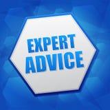 Sachverständigengutachten im Hexagon, flaches Design Lizenzfreies Stockfoto