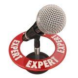 Sachverständiges Mikrofon-Wissens-Klugheits-Interview-öffentliches Sprechen Stockfoto