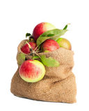 Sack Of Apples stock images