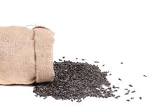 Sack with black sunflower seeds. Stock Images