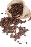 Sack of coffee beans Stock Images