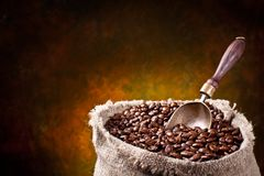 Sack of coffee beans and scoop Stock Image