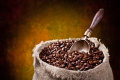 Sack of coffee beans and scoop. Stock Image