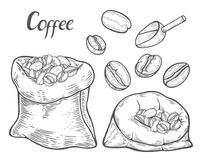 Sack with coffee beans vector illustration