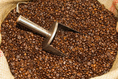 Sack of coffee beans with spoon Royalty Free Stock Photo