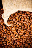 The sack of coffee beans Stock Photo