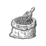 Sack with coffee beans with wooden scoop. Hand drawn sketch style. Vintage black vector engraving illustration for label Stock Photo