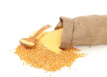 Sack with corn grains and flour. Royalty Free Stock Photos