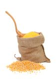 Sack with corn grains and flour. Royalty Free Stock Photography