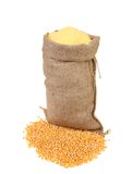 Sack with corn grains and flour. Stock Photo