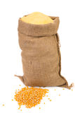 Sack with corn grains and flour. Royalty Free Stock Photo