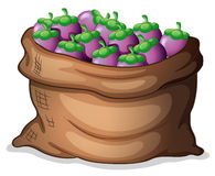 A sack of eggplants Stock Photography