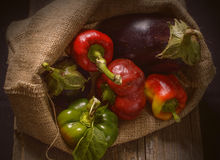 Sack with fresh autumn vegetables Royalty Free Stock Photography