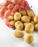 Sack of fresh potatoes. On white background. Vertical Stock Images