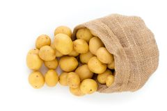 Sack of fresh raw potatoes on wooden background, top view.  Stock Photo
