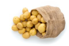 Sack of fresh raw potatoes on wooden background, top view.  Stock Image
