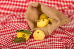 Sack with freshly picked quince still life Stock Photo