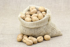 Sack full of walnuts Royalty Free Stock Image