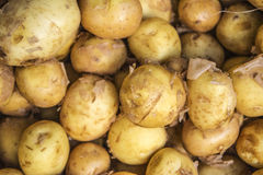 Sack fuls von Kartoffeln stockfotografie