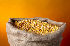 Sack of golden corn Stock Photography