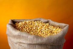 Sack of golden corn Stock Photography