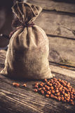 Sack of hazelnuts Royalty Free Stock Photography